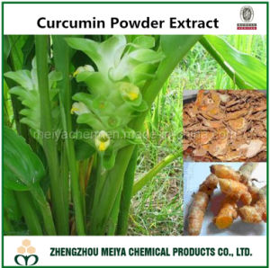 Curcumin Powder Extract pictures & photos