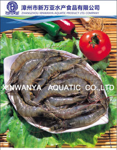 Block/IQF/Semiiqe Chinese Frozen Head on Raw Shrimp