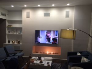 Intelligent Ethanol Fireplace Af66