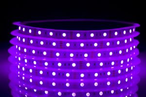 5050 LED Strip 60LED RGB Color Manufacturer pictures & photos
