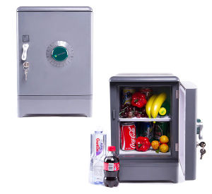 Electronic Mini Fridge 15liter, DC12V AC100-240V in Both Cooling and Warming for Car, Home, Office Use pictures & photos