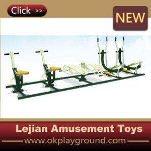 Many Kinds Outdoor Fitness Equipment (12171B) pictures & photos