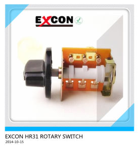 Rotary Switch Hr31 Series with Compound Silver Contact Switch with Cap