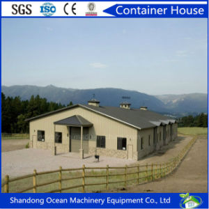 Low Budget Customized Poultry Shed of Steel Structure with Modern Design pictures & photos