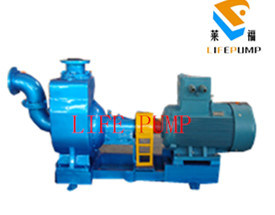 Cyz Self Priming Centrifugal Water Pump