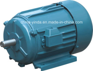 Resistance Start Single-Phase Electric Motor pictures & photos