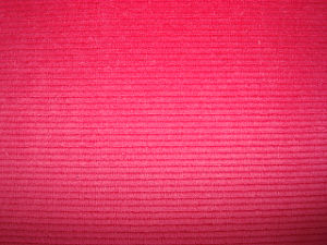 One Side Brushed Warp Velboa Printed Fabric pictures & photos
