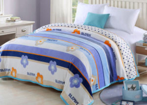 Thickening Single, Double, King Size Printed Flannel Blanket Polyester Blanket (SR-B170316-14)
