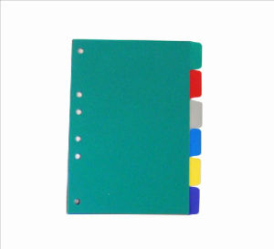 Assorted Index Divider -6 Tab/PP Folder (F-A035) pictures & photos