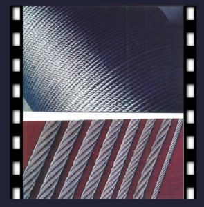 Galvanized 6X12 +7FC Wire Rope pictures & photos