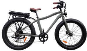 26 Inch Fat Tire Mountain Electric Bicycle with Rear Rack