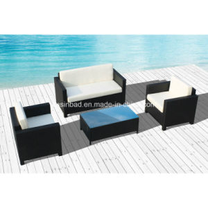 Modern Sofa Set for Outdoor / Living Room with Teatable / SGS (8205-1)