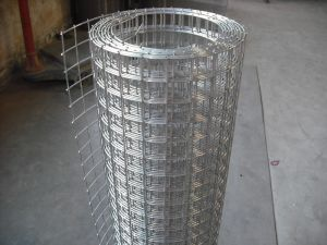 Stainless Steel Welded Wire Mesh/ Welded Sheet/ Plate