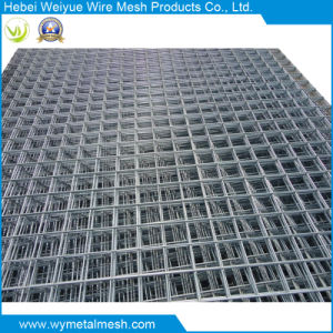 China Stainless Steel Welded Wire Mesh Panel/Sheet - China Welded ...