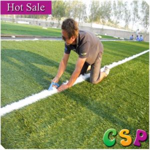 Chinese Artificial Football Lawn