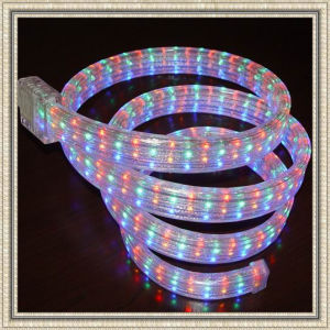 LED Rope Light (Flat 5 Wire) (SCT-R)