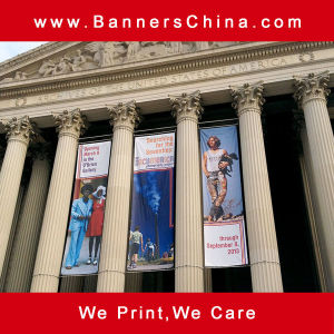 Custom Outdoor Hanging Flag Banner pictures & photos