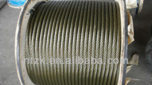 Foreign Trade Aviation Galvanized Steel Wire Rope pictures & photos