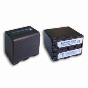 Digital Camera Battery for Sony FP91D pictures & photos