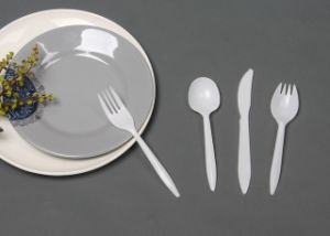 Plastic Disposable Cutlery Spoon Fork Knife Plate (GP2B-1) : disposable cutlery and plates - pezcame.com