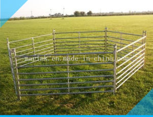 Hot Dipped Galavanized Sheep Hurdles From China pictures & photos