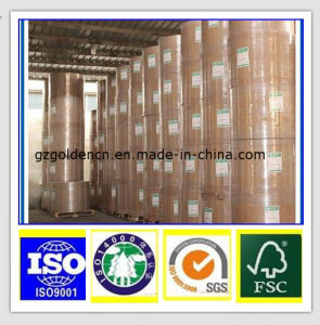 Cheapest Offset Printing Special Paper Corrugated Paper pictures & photos