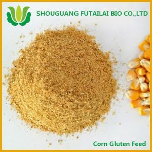 Corn Protein Feed with High Quality and Competitive Price