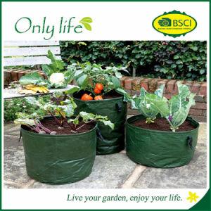 Onlylife High Quality Reusable Grow Bag