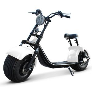 18 Inch Two Wheel 1000W Harley Fat Tires Electric Scooter