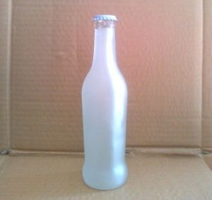 Glass Wine Container/ Packaging/ Bottle pictures & photos