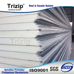 Exporting Composite Sandwich Panel. pictures & photos