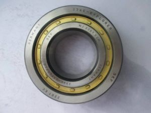 Factory Sell SKF Chrome Nj319 Cylindrical Roller Bearing