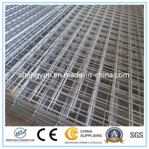 Welded Wire Mesh Panels for Sale