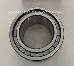 SL-185011, SL18-5011-a Full Complement Double Row Cylindrical Roller Bearing SL185011 pictures & photos