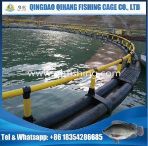 Fish Farming Cage/HDPE Circular Fish Cage for Sea Fish pictures & photos