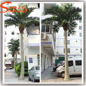 Artificial Coconut Palm Tree for Park or Hotel Decoration pictures & photos