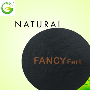 Nature Organic Soluble Powder Humic Acid Fertilizer pictures & photos