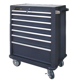 Professional Rolling Tool Cabinet TBR4507-X