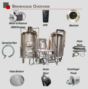Commercial Beer Brewery 800L Pub Business Needed Beer Brewing Equipment