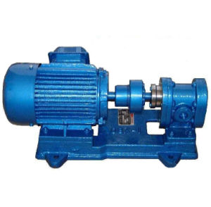 Good Quanlity Hebei Best Supplier Gear Pump