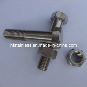 Incoloy 925 N09925 Hex Head Bolt pictures & photos