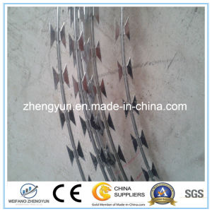 Hot Selling Blade Barbed Wire