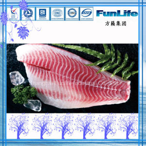 Tilapia Fillet Shallow Skinned OEM Pbo Co Treated Frozen Fish Seafood