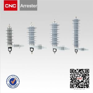 Yhws Polymer Lightning Arrester pictures & photos