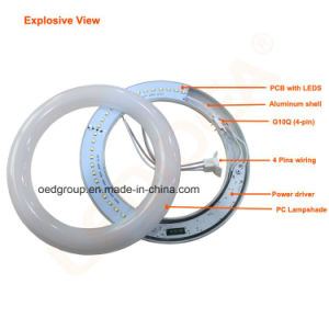 Round Shape G10q 4 Pins T9 LED Ring Tube Light with Whole Lamp Dia. 300mm 20W pictures & photos