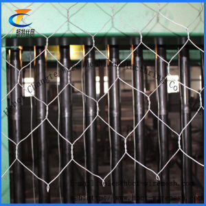 (PVC / Hot / Electric) Gabion Wire Mesh (6*8 8*10) pictures & photos