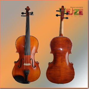 Master Natural Flame Viola pictures & photos