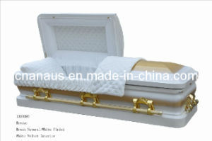 Casket (ANA) pictures & photos