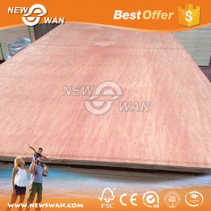 18mm 1220*2440 Size Bintangor, Okoume Cheap Commercial Plywood Price pictures & photos