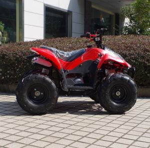 Made in China Cheaper 4 Wheeler Buggy 50cc Kids ATV (A05) pictures & photos